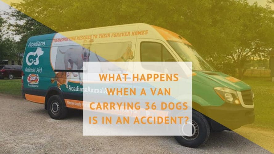 Pet Van Accident Wichita Falls